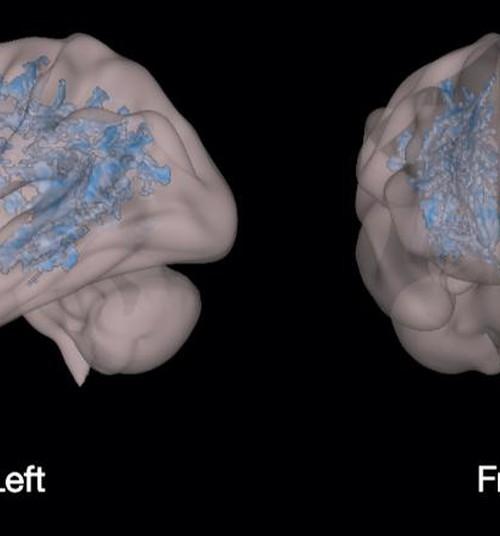 PILDID: Kuidas mõjub lapse ajule lugemine, kuidas aga ekraanide vaatamine?