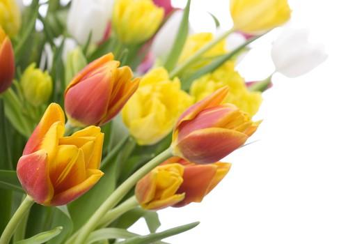 Kaheksa moodust, kuidas paarisuhtes üksteist pidevalt üllatada