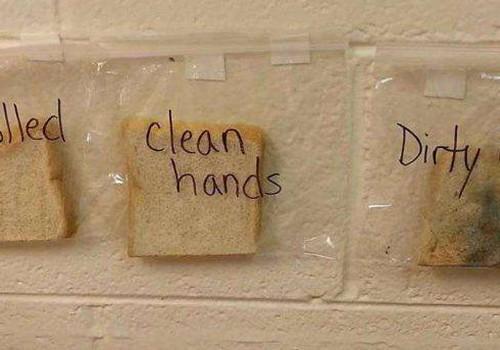 Põnev eksperiment, mis õpetab kätepesu tähtsust