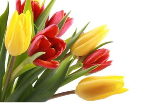 Naiselik märtsikuu on alanud: osale võistlusel ja võida Attirance poolt auhindu!