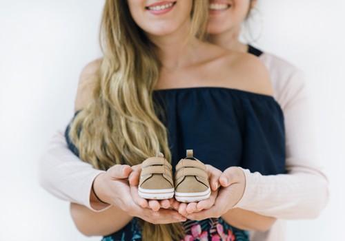 Veel üks uuring tõestab, et samasoolised vanemad on sama head
