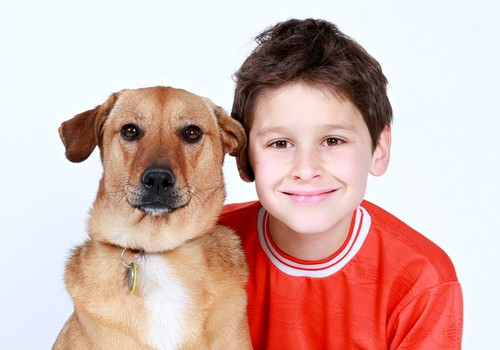 Kooselu koertega hoiab lapse tervist
