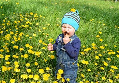 Beebi avastab kevadet : õues on nii äge!