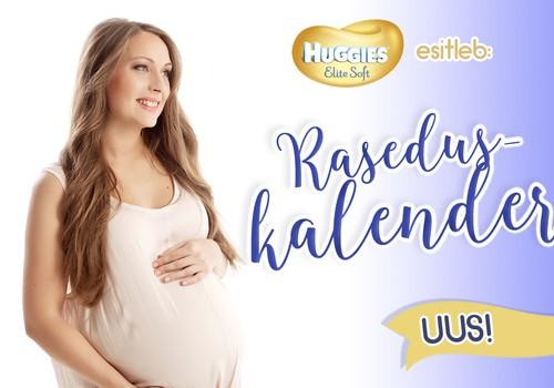 UUS! Emmede Klubi iganädalane raseduskalender