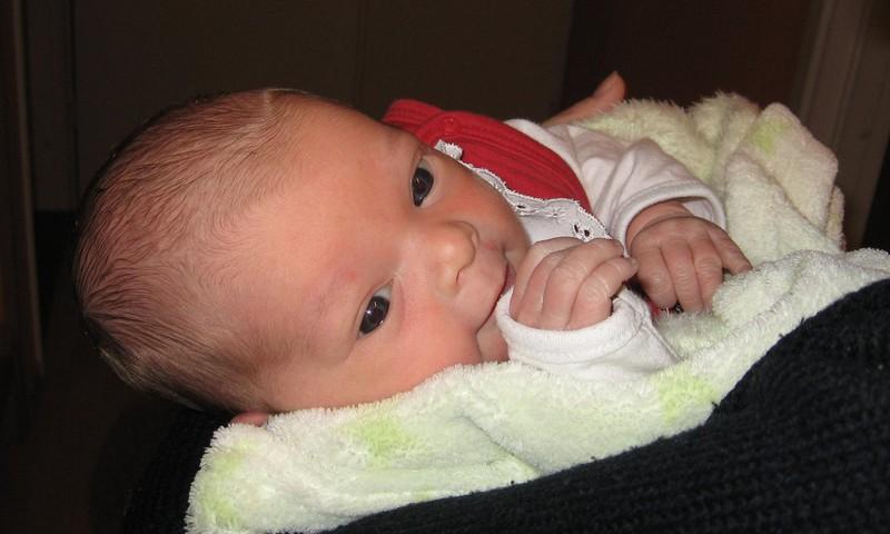 Sünnilugu: Kuidas Maia siia ilma sai