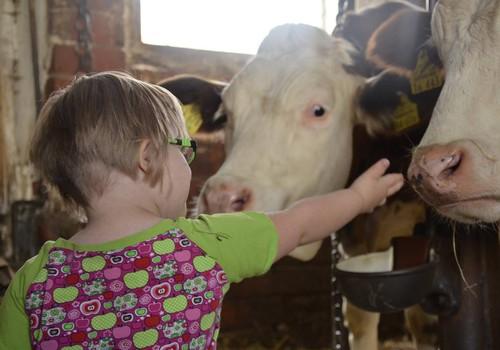 Otsus: lubame Downi sündroomiga lapsel elada