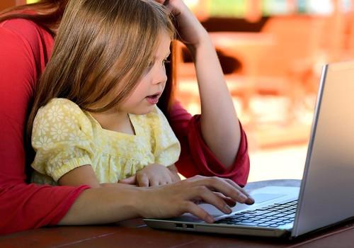 Politsei selgitab: kui palju sekkub seadus lastest blogimisse?
