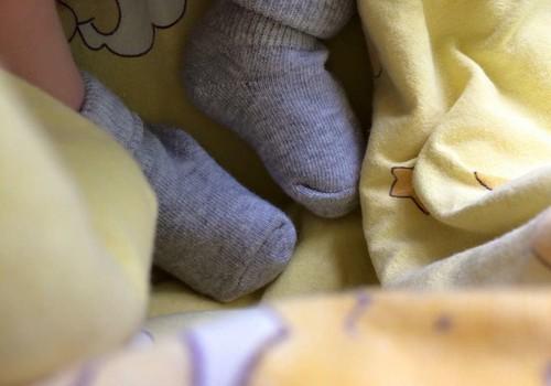 Sünnilugu: Kuidas Hugo siia ilma sai