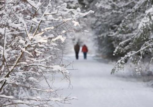 Kuidas peletada talvist kurvameelsust?