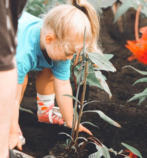 Eakohased majapidamistööd erinevas vanuses lastele