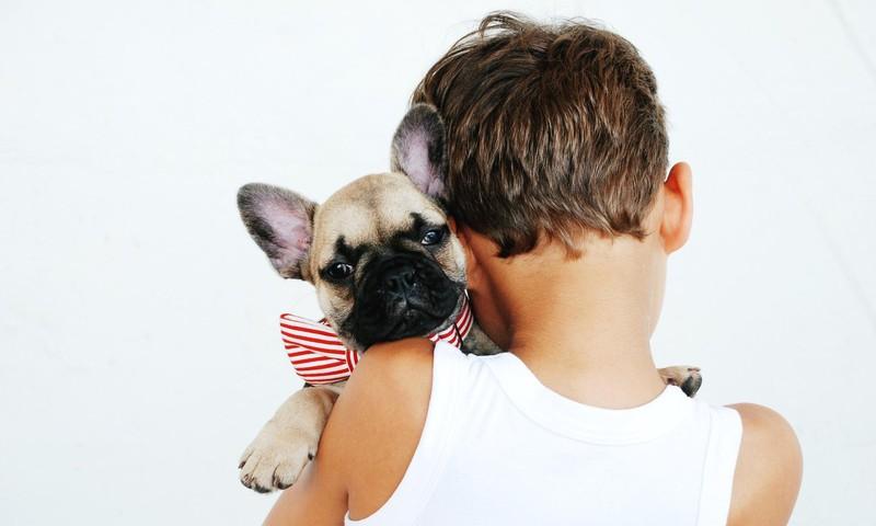 Kas ja kuidas on lemmikloomad lastele kasulikud?
